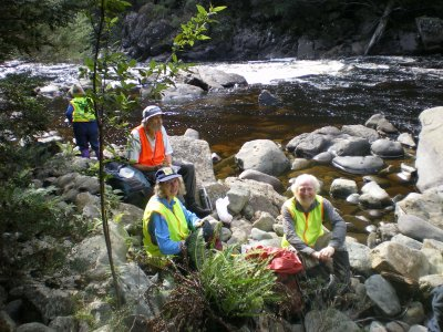 6 pct working bee leven river 20171203 1306285894